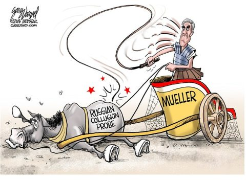 MuellerProbe