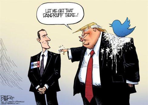TwitterDandruff