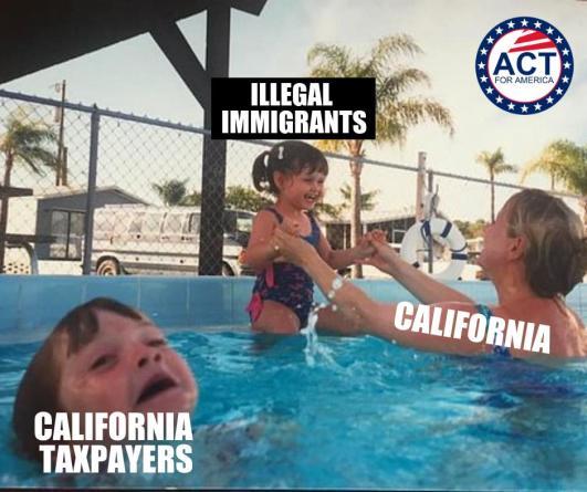 CaliforniaTaxpayersDrowning